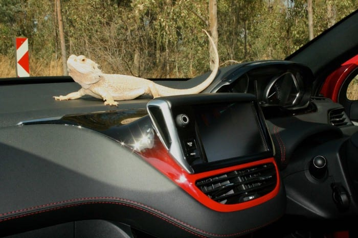 Peugeot 208 GTi interior - Surf4cars