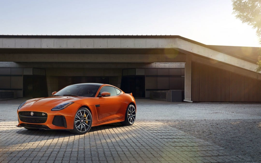 Jaguar reveals two new cats for South Africa | Latest News